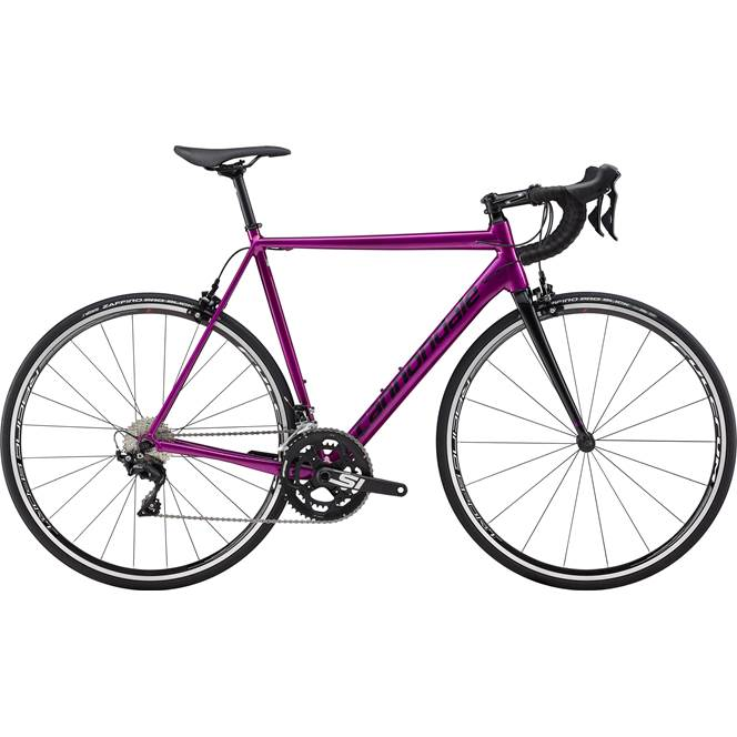 2019 Cannondale CAAD12 105 Mens Road bike in Purple